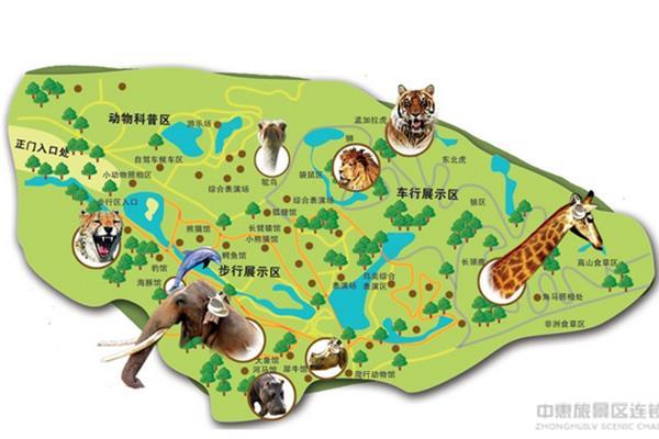鸟乐园→爬行动物馆→大象驯化(11:30)→豹馆→节尾狐猴岛→游园结束